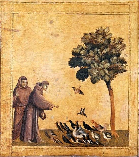 Giotto StFrancoisprechantauxoiseaux 1300env